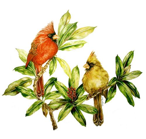 A Pair of Cardinals